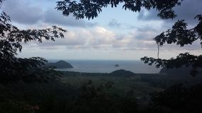 belanak del selong del lombok de la vida natural Fotos de archivo