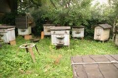 Belarus beekeeper. Bee-master works in Bee-garden, Novy Pogost, Belarus stock photography