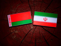 Belarus flag with Iranian flag on a tree stump isolated. Belarus flag with Iranian flag on a tree stump Royalty Free Stock Photography