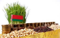 Belarus flag waving with stack of money coins and piles of seeds Stock Image