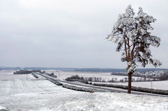 belarus liggandevinter Arkivbild