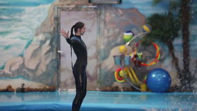 BELARUS, MINSK - 2014: Dolphins show in the dolphinarium. stock footage