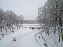 Belarus. Winter Gomel  in Park Royalty Free Stock Photo