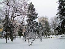 Belarus winter. Umyantsev Park in the city of Gomel Royalty Free Stock Photos