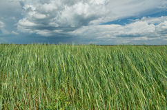 Belarusian Country Stock Photography