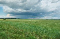Belarusian Country Royalty Free Stock Photography