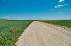 Belarusian Country road Royalty Free Stock Images
