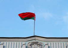 Belarusian flag Stock Images