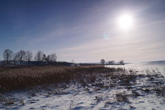 Belarusian landscape in winter Royalty Free Stock Photo