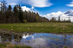 Belarusian open spaces in the spring royalty free stock photos