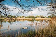 Belarusian Or Russian Wooden House In Village Or Countryside Of Belarus. Or Russia Countries With Lake Pond River At Spring Day Stock Photos