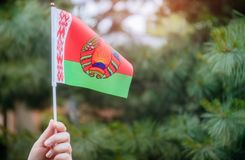 Belarussian flag in hand Independence Day, Flag Day concept. Flag Day with Belarussian flag in hand in sunny day Independence Day concept, belorussia, country royalty free stock image