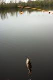 Belastete Zeile (für Unterseitefischen) Lizenzfreie Stockfotografie
