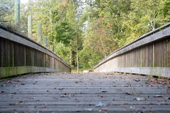 Belaubte Brücke Lizenzfreie Stockfotos
