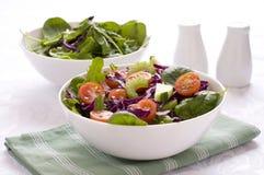Belaubter grüner Salat Stockfotos