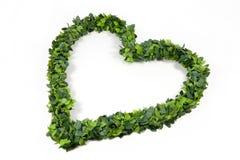Belaubtes grünes Liebesinneres lizenzfreie stockbilder