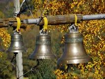 Belces en el campanario imagen de archivo libre de regalías