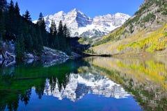 Belces marrón durante la estación de follaje con las montañas nevadas y el álamo temblón amarillo que reflejan en el lago Fotografía de archivo libre de regalías