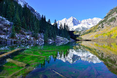 Belces marrón durante la estación de follaje con las montañas nevadas y el álamo temblón amarillo que reflejan en el lago Imagen de archivo libre de regalías