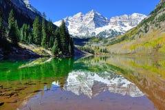 Belces marrón durante la estación de follaje con las montañas nevadas y el álamo temblón amarillo que reflejan en el lago Fotografía de archivo