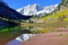 Belces marrón durante la estación de follaje con las montañas nevadas y el álamo temblón amarillo que reflejan en el lago Imagen de archivo