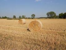 bele hay round Zdjęcie Stock