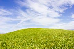 belek kursu golfa indyk Zielona trawa na polu Niebieskie niebo, pogodny Zdjęcia Stock