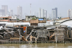 Belem: lumberyard on the Guama River Stock Photography