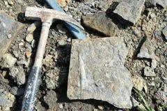 Belemnietfossiel in steen Royalty-vrije Stock Afbeeldingen