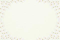 Beleuchten Sie strukturierten Hintergrund mit halbem transparentem Gänseblümchen Franc Lizenzfreie Stockbilder