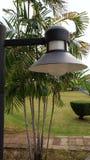 Beleuchtend im Garten, haben helle Bereiche im Park, beleuchtend t Stockfotos