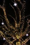 Beleuchteter Weihnachtsbaum Stockfoto