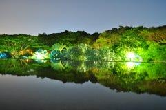 Beleuchtetes Grün bis zum Nacht Stockfoto