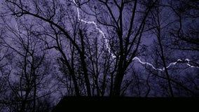 Beleuchtungsbolzen durch die Bäume Lizenzfreies Stockfoto