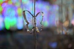 Beleuchtungslichter machen Leute glücklich in einem speziellen Moment Lizenzfreies Stockbild