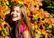 Beleza 20 do outono Fotos de Stock
