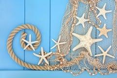 Beleza abstrata da estrela do mar Fotografia de Stock Royalty Free