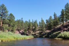 A beleza cênico do Colorado Rocky Mountains Fotos de Stock