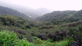 Beleza cênico do vale de Amboli Fotos de Stock Royalty Free