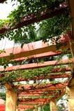 A beleza da estrutura do teto imagens de stock royalty free