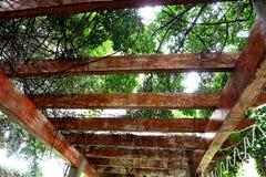 A beleza da estrutura do teto fotos de stock royalty free