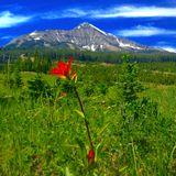 Beleza da montanha imagens de stock