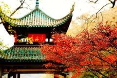 A beleza da montanha de Yuelu na cidade de Changsha imagens de stock royalty free