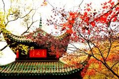 A beleza da montanha de Yuelu na cidade de Changsha fotos de stock royalty free