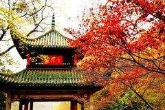 A beleza da montanha de Yuelu na cidade de Changsha imagem de stock royalty free