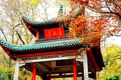 A beleza da montanha de Yuelu na cidade de Changsha fotos de stock
