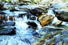 Beleza da natureza Foto de Stock Royalty Free