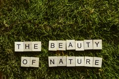 A beleza da natureza escrita com letras de madeira cubou a forma na grama verde foto de stock royalty free