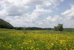 A beleza da natureza ucraniana Foto de Stock