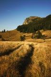 A beleza da paisagem da montanha fotos de stock royalty free